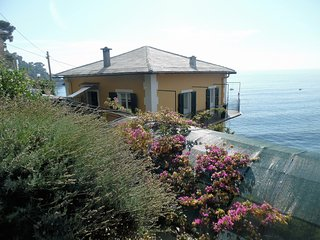 Wonderful Villa overlooking the sea, Camogli
