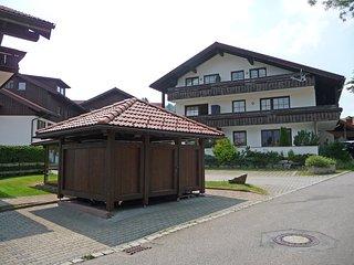 Almblume #5563.1, Oberstaufen