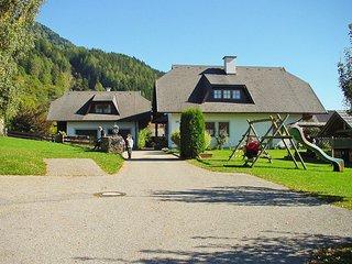 Schnitzer #5998.1, Seeboden