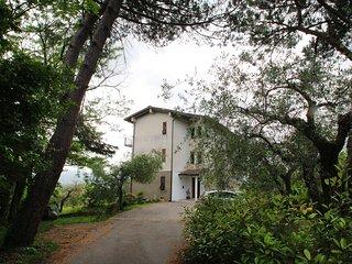 Il Bosco #7216.1, Santo Stefano di Magra