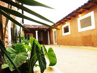 Un brin de nature dans LA CASA DE LOS CACTUS