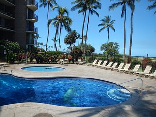 Maui Beachfront Condo  Sleeps 6 Free WiFi, Kihei
