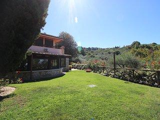 Mina #8104.1, Frascati