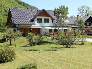 Bohinj Lake - Apartments Villa Dov, Ribcev Laz