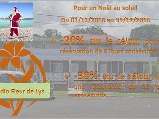 Promo NOEL AU SOLEIL Studio T1bis Fleur de Lys, Trois Rivieres