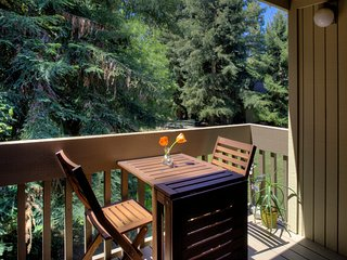 Beautiful 1 Bedroom near Downtown, Mountain View