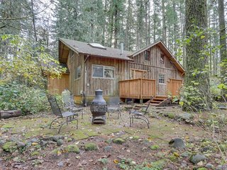Vintage mountain cabin w/ private hot tub, close to skiing, hiking & more!