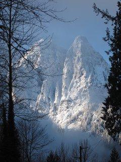 Mt Index with her winter coat.