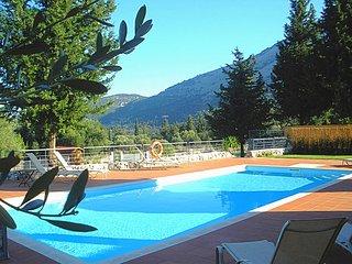 Large Swimming Pool Length 11m Width 4.5m