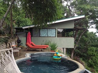 private walk out deck with BBQ, lounge chairs and your very own infinity plunge pool with jacuzzi.