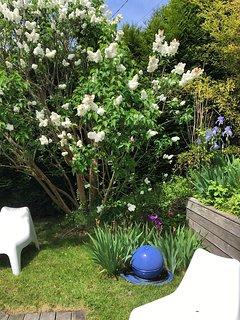 jardin et terrasse en bois avec salon de jardin au soleil toute la journée