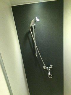 Walk-in en-suite shower from downstairs bedroom (previous photo)