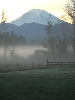 Fog covering the Plateau, Mt Rainier at sunrise from the back deck.  Coffee anyone?