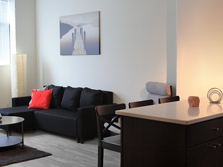 Luxury 1Bedroom Loft in East Cambridge/MIT/Harvard, Boston