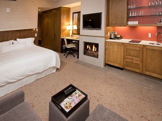 Studio with kitchenette, microwave, mini fridge, 2 burner cook top, king bed, sofa sleeper