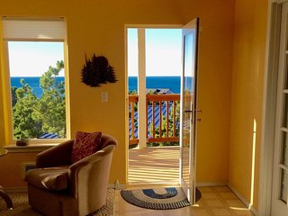 180-Degree Ocean View!  Bring binoculars!, Oceanside