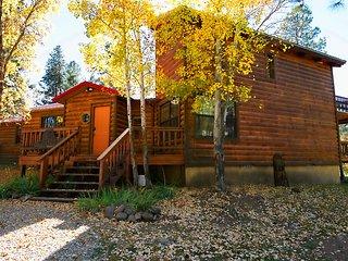 Bear Country Cabin, Ruidoso