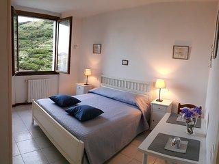 Camere in affitto a Riomaggiore