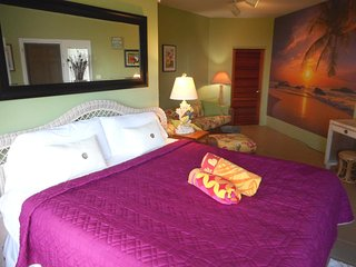 Open X-mas 12/21-28, New Years 12/28-1/4 King.Bed, A/C, Wi-Fi, washer/dryer, TV