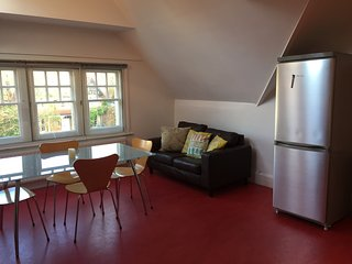 Spacious Cosy Apartment in North Oxford with parking!, Marston