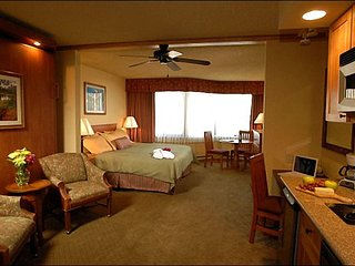 Charming Grand Lodge Studio Unit - Great for Couples Traveling Together (1113), Crested Butte