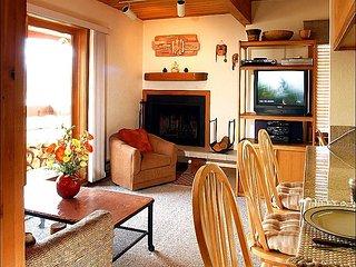 Wood Creek Condominium - Wonderful Year-Round Getaway (1132), Crested Butte