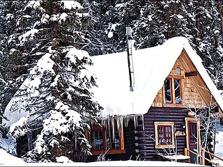 Beautiful Wooded Location - Wonderful Views (1174), Crested Butte