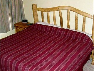 Wonderful Axtel Condo - Your Choice of Bedding Arrangements (1233), Crested Butte