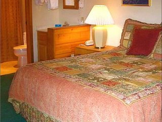 Perfect Condo for a Couple - Quality Accommodations (1287), Crested Butte