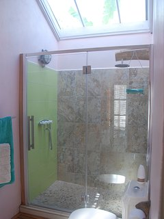 Bright bathroom with walk in shower