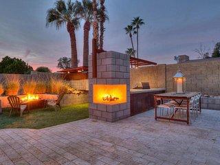 Cactus Wren, Scottsdale