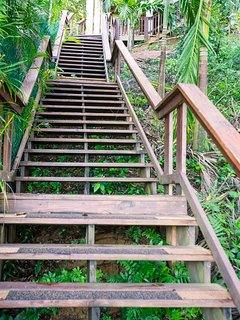 These steps are not for the faint of heart, but they lead to incredible views!