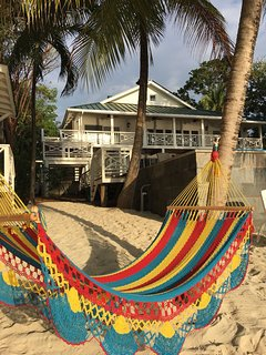 Hammocks on our beach