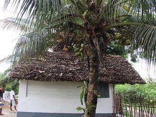 MAHAMBO COCONUT BUNGALOWS, Mahambo