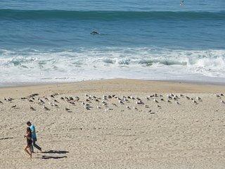 Short Walk White Sandy Beaches & Village, Pets OK  333 Pine Ave