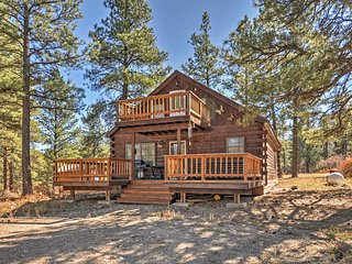 1BR Pagosa Springs Cabin w/ Expansive Two Story Deck!
