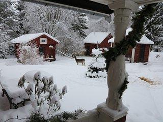 Olsbacka Cottage, en idyll nära Falun.