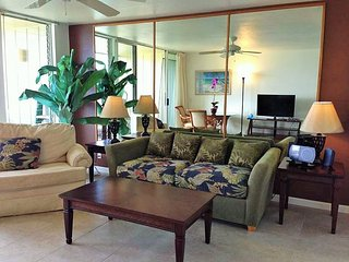 Wailua Bay View 1 Bedroom Ocean Front 115