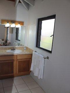 En Suite Bath in Loft Bedroom