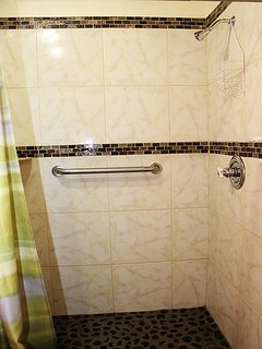 Master Suite Walk-In Shower