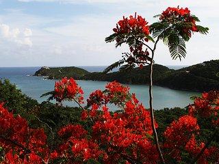 Cocoa Reef Villa, St. John