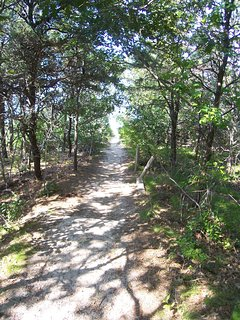 In less than two minutes walking time from the house, you go down this shaded path . . .