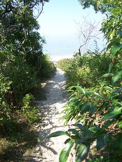 . . . you find the beach straight ahead . . .