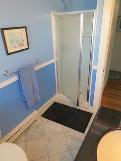 New walk-in shower, main level bath.