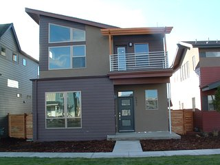 Modern 5 Bedroom Home, Denver