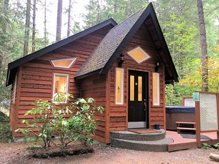 Glacier Springs Family Cabin #16 - HOT TUB, BBQ, PETS OK, FIREPLACE, D/W, SLPS-4