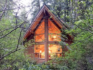 Snowline Cabin #4 - A pet-friendly cedar cabin with a private outdoor hot tub!