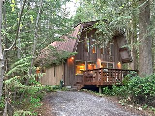 Cabin #8 - A great private cabin with a sauna! Pet friendly, too! FREE WI-FI!!, Glacier