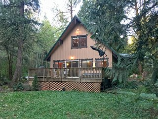 Glacier Springs Cabin #22 - Cozy pet friendly cabin with an outdoor hot tub!