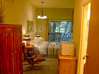Snowline Lodge Condo #77 - KITCHENETTE, FULL BATH, DVD, SHARED WIFI,  SLEEPS-2!